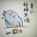 『🙄辛い妊婦生活🙄』の画像