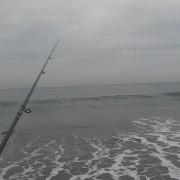 3月某日 サーフで海アメ・海サクラ釣行(1回目)