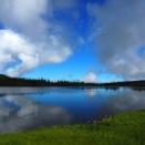 花咲く木道と天を映す鏡