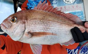 遊漁船ニライカナイの釣果ブログ