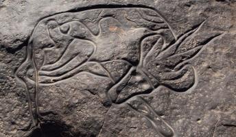 古代人の残したロックアート 岩肌に無造作に描かれた絵に見るメッセージ