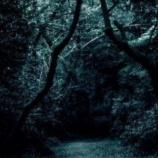 『六甲山にでる牛女の話「見た人に話しを聞いた」』の画像
