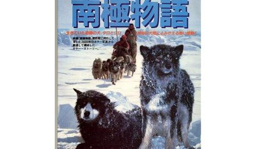 日本映画「南極物語」を見た海外の反応