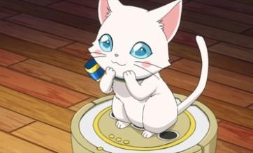 猫がスナック菓子を狙うので届かない場所に設置した結果wwwwww