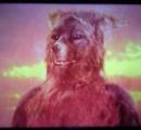 【悲報】実写版ぬ~べ~の 妖狐 が酷い 犬やんけ・・・