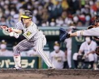 阪神中野拓夢に矢野監督の「ささやき」、8回絶妙犠打に「ちょっと話を」