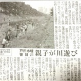 『(埼玉新聞)魚やカニ捕れたよ 戸田市境笹目川 親子が川遊び』の画像