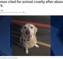 犬を捨てる場面が防犯カメラに…状況を理解していない犬が尻尾を振る切ない動画 飼い主特定 非難殺到 【米国】