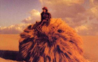 『鈴木祥子 「風の扉」』の画像