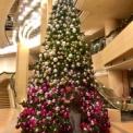 世界中の人たちの平和の祈りが地球を包み込むクリスマス!!〜東京レイキを終えて〜