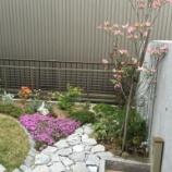 『芝桜びゅーてぃふぉー@K様邸』の画像