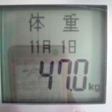 『10月の減量結果。マイナス700g。最小値更新』の画像