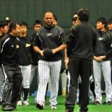 『【野球】阪神今成がゴメスに愛称「ゴメちゃん」』の画像