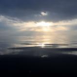 『1月20日 釣果 スロージギング 写真追加分』の画像