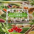 『実物大・そのまんま まるごと野菜カード』重版出来!