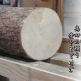 『高田の松』の画像