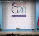 ネコ3匹が厳重なセキュリティを突破! G20サミットに現れる(※動画あり)