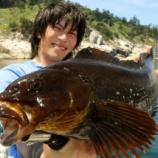 『ロックフィッシュ釣行動画 ベッコウ50UPファイトシーン&空き情報』の画像