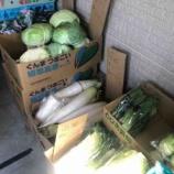『【デリバリー】配達してくれる戸田市の八百屋さん、戸田市役所南通り・まるこう青果さんの「本日のお野菜・くだもの」情報。宅配受付はお電話で午前11時までの受付です。』の画像
