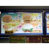 『(沖縄)ぬーやるバーガー』の画像