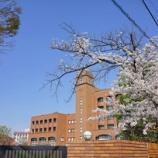 『【写真】 a7R  桜 7分咲! ほぼ満開。』の画像