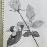 『【鉛筆画】お花とこども』の画像