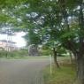 長峰公園の青いモミジの葉と鳥の絵もあるシンボルタワーの姿