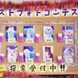 『射水店8月のベストフォトコンテスト1位のワンちゃん発表!!』の画像