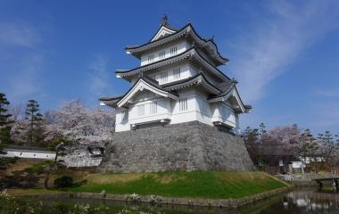 『恒例!のぼうの城&皇居乾通りの桜 <2018>』の画像
