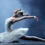 『たくさん感謝をこめて・・・『ベリーダンサーのためのバレエ・エッセンス』』の画像