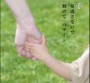 母親と男の自宅からネコ21匹保護 2歳児衰弱死で 【北海道・札幌】