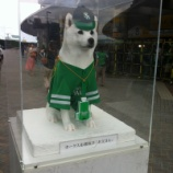 『(番外編)緑一色に包まれた福岡Yahooドーム』の画像
