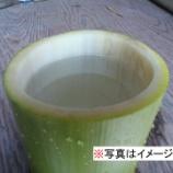 『若竹より出ずる神秘の水 「竹水」を飲んでみたよ』の画像