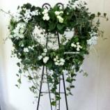 『バラ咲きジュリアンとイベリスでウェルカムフラワーになったハート型リースバスケット』の画像