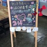 『【もうすぐバレンタインデー💛バレンタインデーセールも開催します】2/12(水)~2/14(金)の3日間は家庭用ミシンを5%値引きします!』の画像