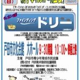 『ディズニー映画「ファイティングドリー」12月15日(日)戸田市文化会館「親子ふれあい映画会」で上映。9時半開場・10時開演。入場無料・申込不要です。』の画像