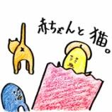 『🐈赤ちゃんと猫🐈』の画像