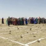【動画】中国、内モンゴルで「牛糞拾い大会」と「牛馬糞識別大会」が開催される! [海外]