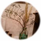 『植物に学ぶ』の画像