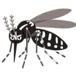 【医学】都市伝説じゃなかった!「なぜか蚊に刺されやすい人」には特徴があると判明