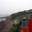 『宮崎の旅2~鵜戸神宮』の画像