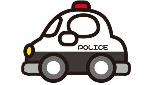 「10代をパトカーで追跡すると大人のような行動が取れない」NZメディアの報道に疑問の声が続出