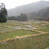 『今年も米作りが始まります!』の画像