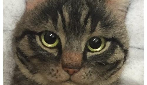 日本人が製作した羊毛フェルト猫がさらにパワーアップ 海外からの注目が凄いことに