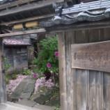 『【2014年道南の旅】歴史のある建物で頂くニシンそば (江差 横山家)』の画像