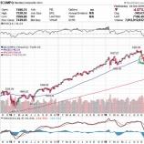 『米ハイテク株暴落で大草原www個人投資家はディフェンシブ中心の投資戦略を心掛けろ!』の画像