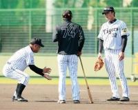 【悠久の若虎】鳴尾浜最年長の新井良太さん、2軍秋季キャンプで掛布にしごかれる