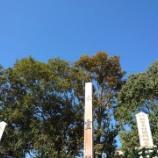 『木霊塔建立供養式』の画像