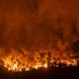 『【大東京戦災焼失地図】東京空襲で燃えた範囲がヤバすぎ』の画像