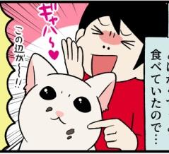 飢餓子猫にたっぷり食べさせていたら、シルエットと口周りに変化が!?
